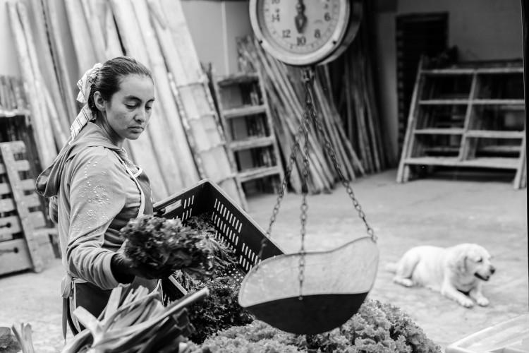 Ruth Zamudio vend ses légumes au marché bio de Fusagasuga, où l'économie sociale et solidaire est encouragée.