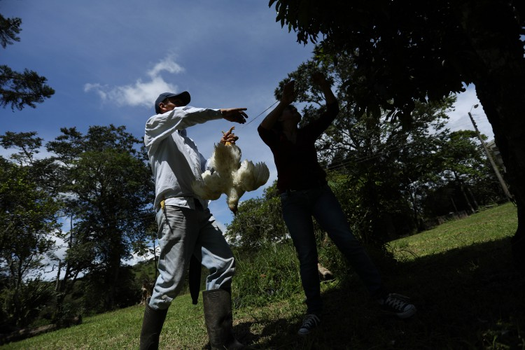 José Luis et sa femme préparent le sancocho (soupe traditionnelle colombienne)